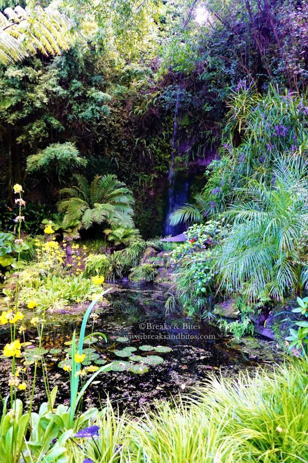 Eden Garden Waterfall - Auckland