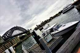 Sydney day 19 16
