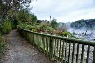 Kuirau Park10