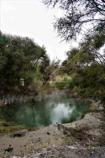 Kuirau Park18