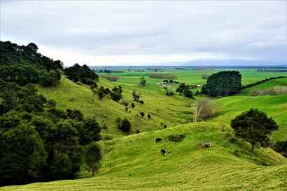 The views we beheld enroute Rotorua