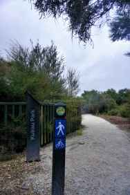Kuirau Park28