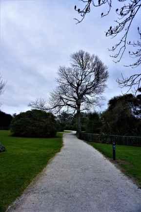 Kuirau Park31